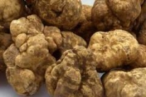 tartufi, truffles, osteria dei fauni